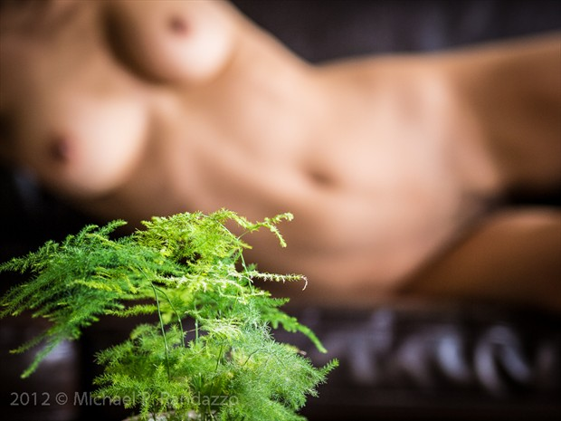 The Fern Artistic Nude Photo by Photographer PhotoGuyMike