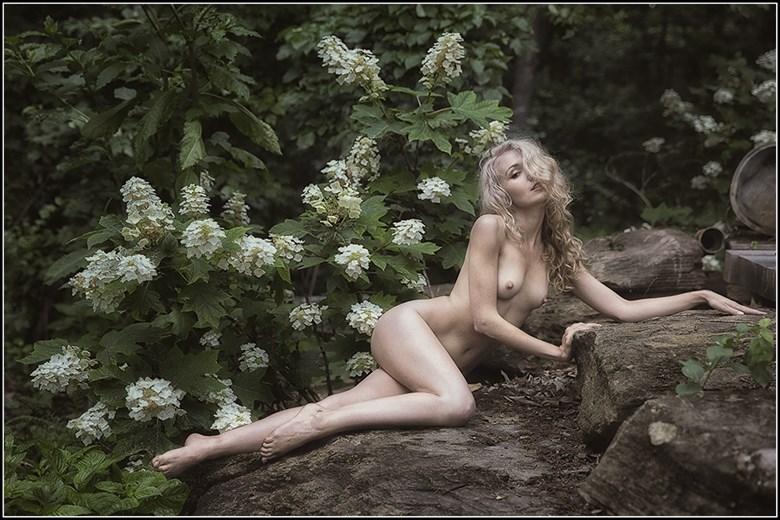 The Forest Fiarie Queen Artistic Nude Photo by Photographer Magicc Imagery