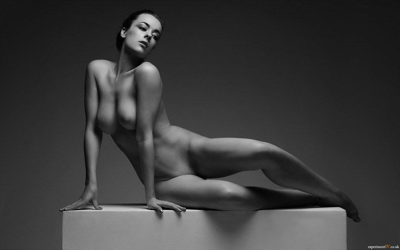 The Posing Box   Elegant Artistic Nude Photo by Photographer Terry King