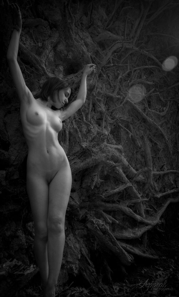 The Roots of Beauty Artistic Nude Photo by Photographer Appeal Photography, LLC