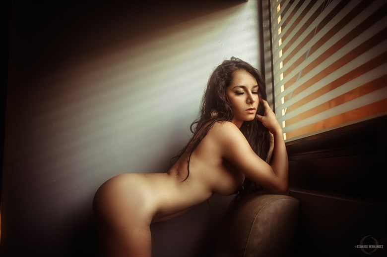 The Sense of Beauty: Miriam. Implied Nude Artwork by Photographer hdzphoto