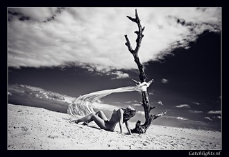 The Tree 01 Artistic Nude Photo by Model Diana