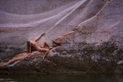 The Wall Artistic Nude Photo by Photographer Inge Johnsson