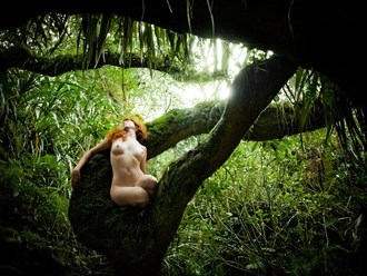 The dream of the Pachamama Artistic Nude Photo by Photographer Diane Rainard
