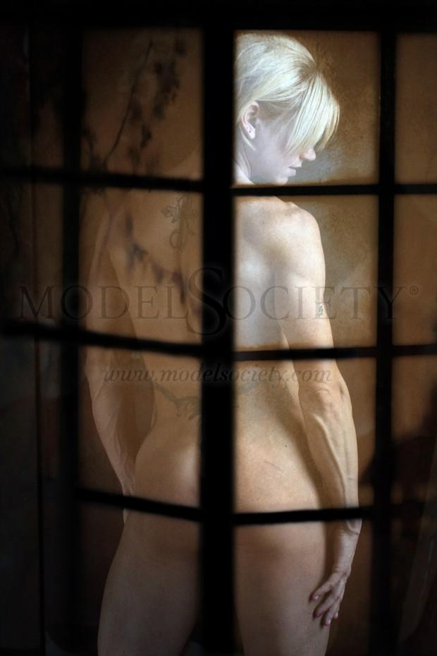 The erotic of strength  Artistic Nude Photo by Photographer Digmansworld