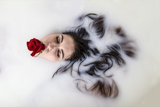The rose Abstract Photo by Photographer James W