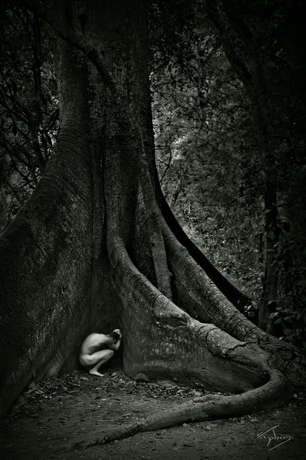 The tree of life Artistic Nude Photo by Photographer Filipp Keks