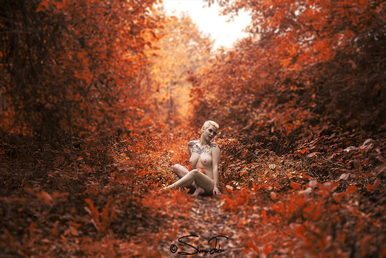The way to the woods Artistic Nude Photo by Photographer shinu john