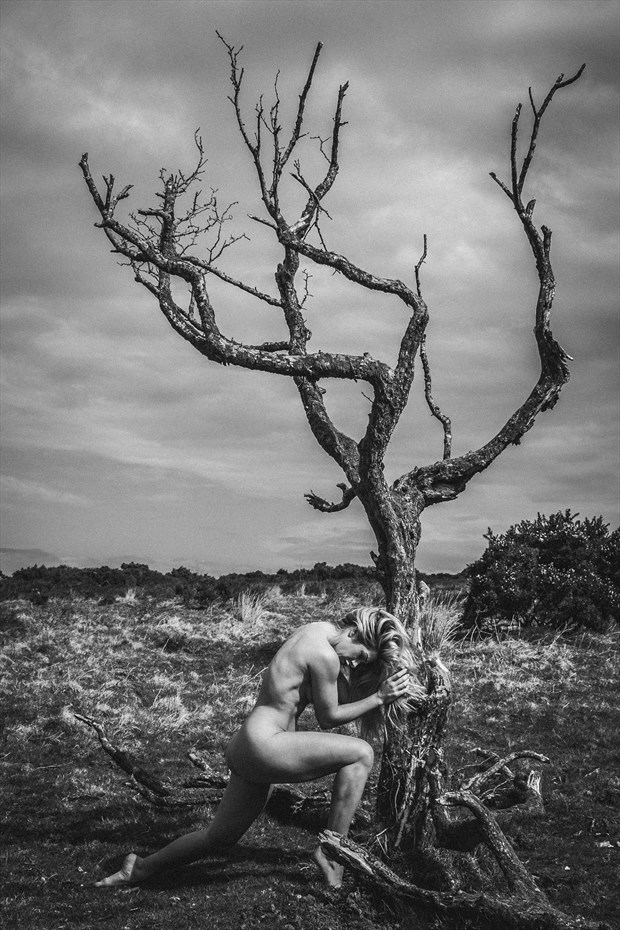 Tillie Artistic Nude Photo by Photographer DJR Images