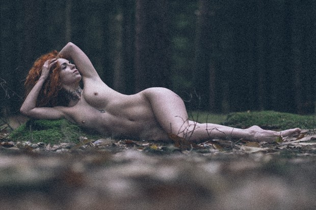 Tink in the woods Artistic Nude Photo by Photographer DJR Images