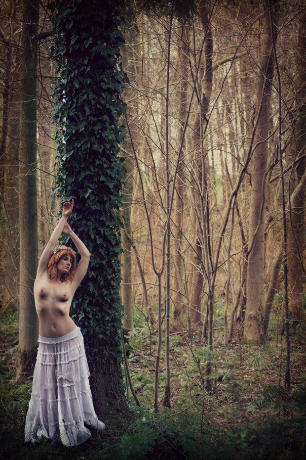 Titania Nature Photo by Photographer Whiteraven Photography
