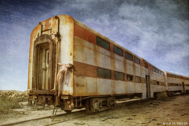 To catch a train Nature Photo by Photographer balm in Gilead