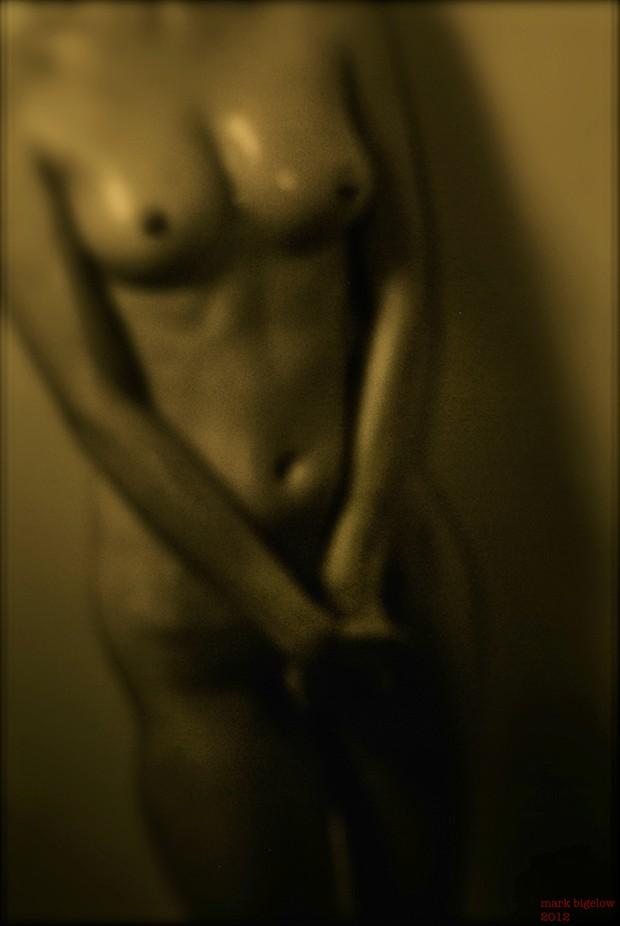 Torso 9 Artistic Nude Photo by Photographer Mark Bigelow