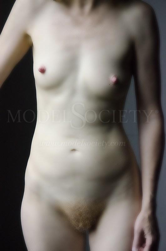 Torso Artistic Nude Artwork by Artist Atlanta Art Figure