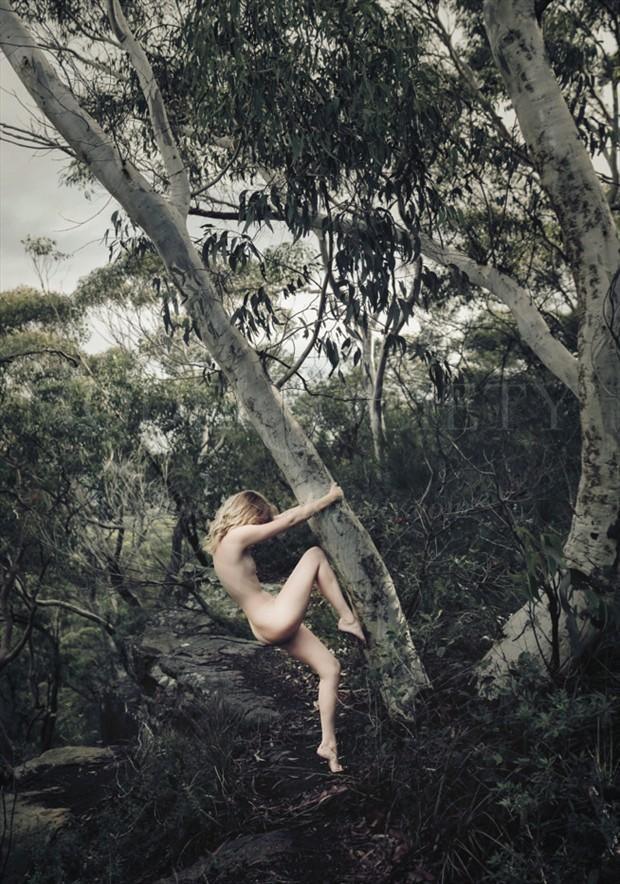Tree Hugger Artistic Nude Photo by Model Sylph Sia