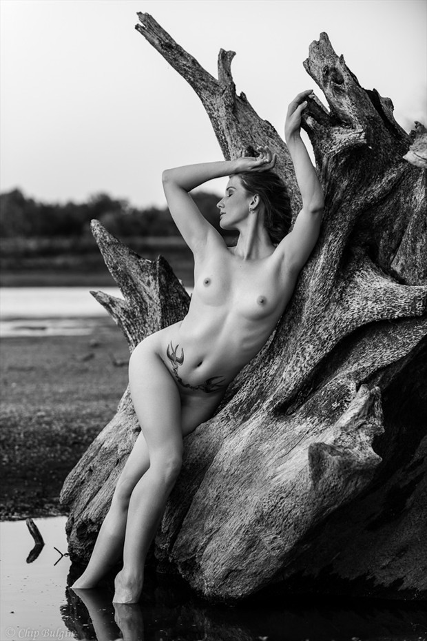 Tree Stump Artistic Nude Photo by Model MaryCeleste
