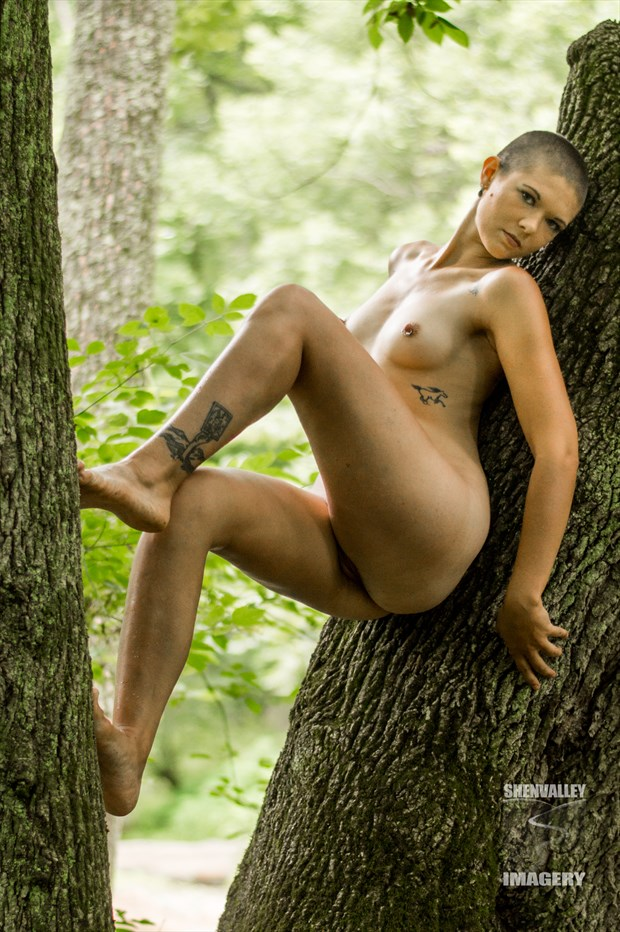 Tree climber  Artistic Nude Photo by Model Cassis Bernadette