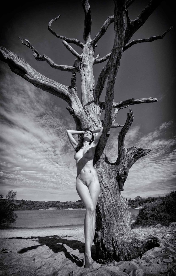 Treescape%232 Artistic Nude Photo by Photographer BenErnst