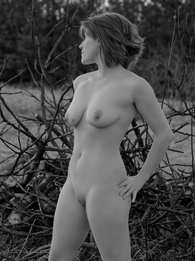 Tumble Weed  Artistic Nude Photo by Model Tricia DeAnne