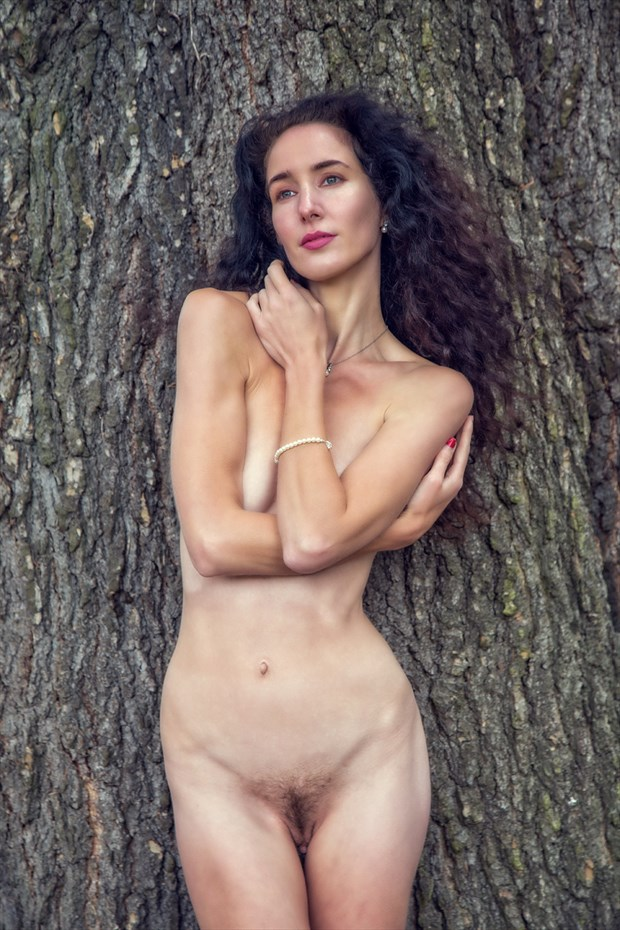 Under the Cedar Tree Artistic Nude Photo by Photographer MaxOperandi