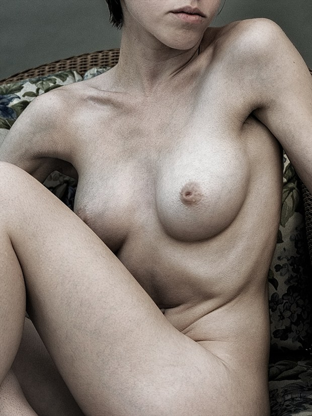 Under the Muslin v2 Artistic Nude Photo by Photographer rick jolson