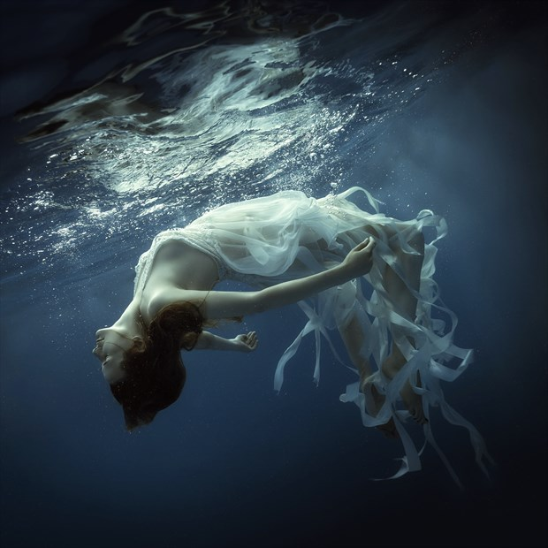 Underwater dreams Nature Photo by Photographer dml