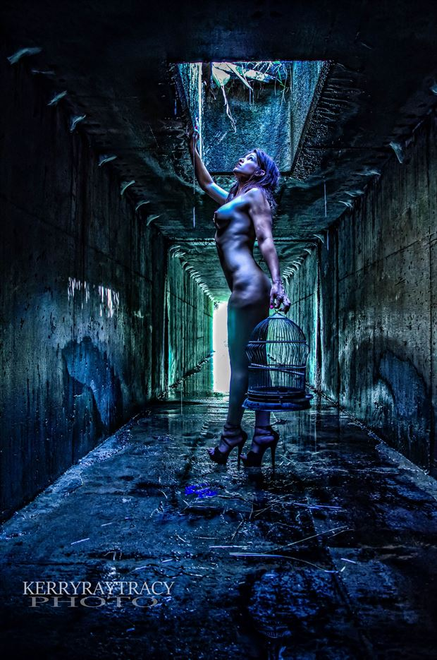 Underworld,......Caged Artistic Nude Artwork by Photographer KerryRayTracy
