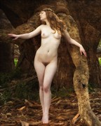 Union with the Trees Artistic Nude Photo by Photographer CalidaVision