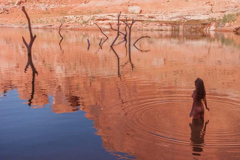 Untitled, image %234 Nature Photo by Photographer Craig Blacklock