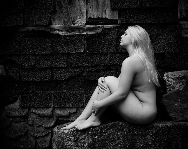 Untitled  Artistic Nude Photo by Photographer MSL Photography