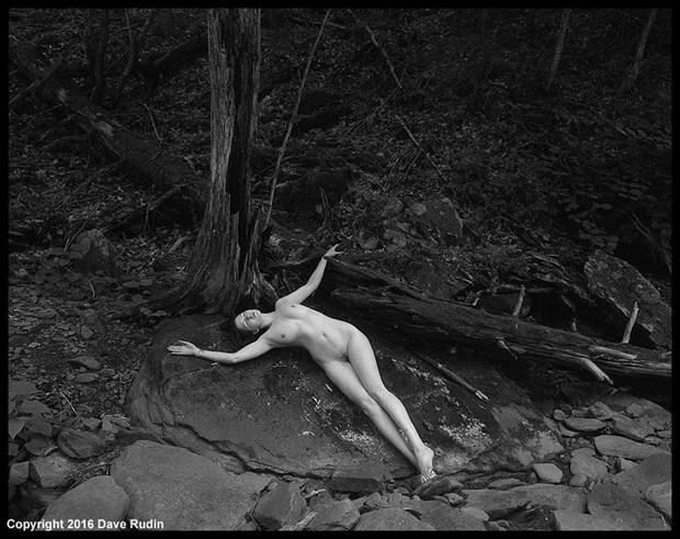 Untitled Nude, 2016 Artistic Nude Photo by Photographer Dave Rudin