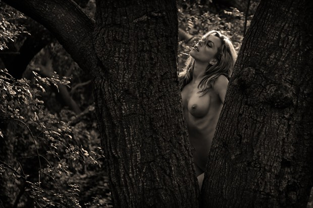 V in the tree Artistic Nude Photo by Photographer DanWarnerPhotography