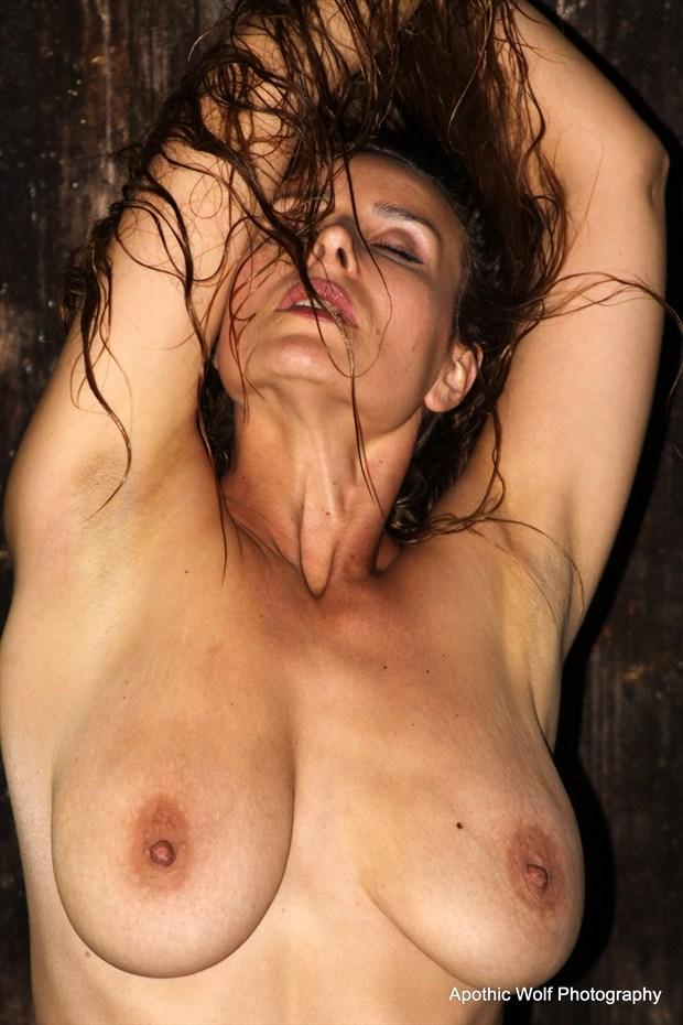 Vassanta Artistic Nude Artwork by Photographer A W Photography