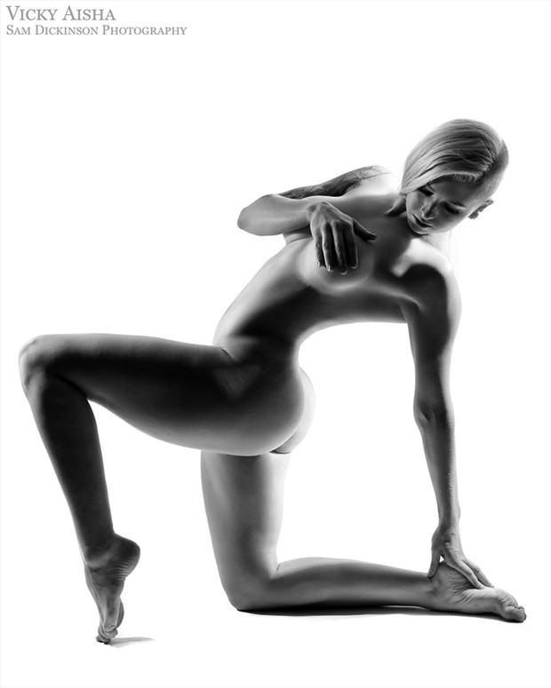 Vicky Fitness Artistic Nude Photo by Photographer Sam Dickinson