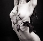 Vine Artistic Nude Photo by Photographer lancepatrickimages