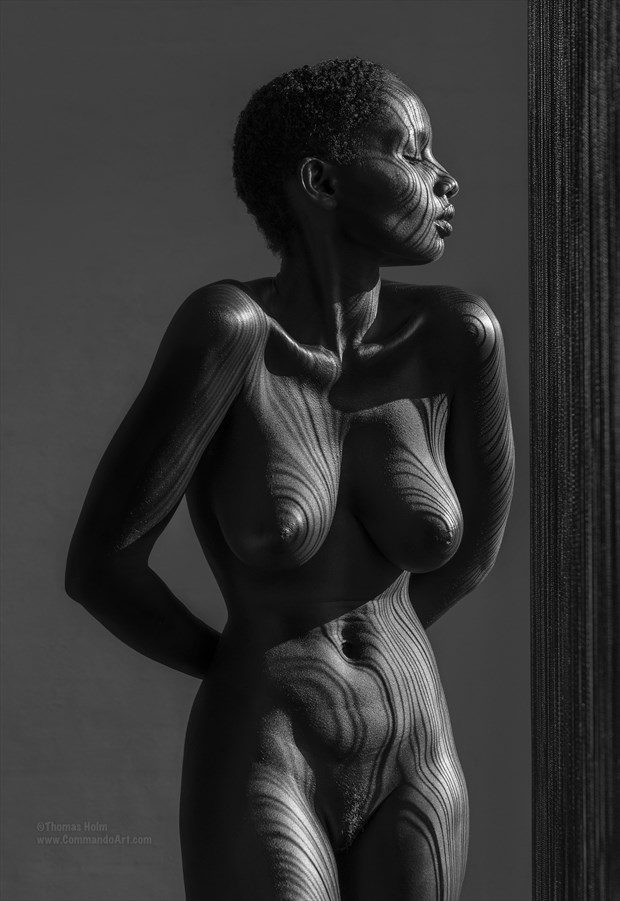 Volouptous Curves Artistic Nude Photo by Photographer CommandoArt