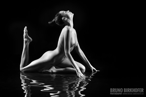Water Lily II Artistic Nude Photo by Photographer Bruno Birkhofer
