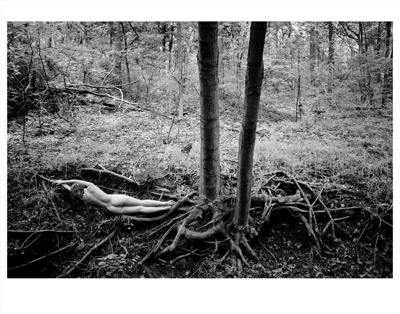 Well Rooted Artistic Nude Photo by Photographer GaryMPhoto
