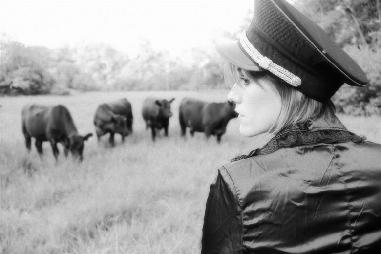 When the Cows Come Home Nature Photo by Model Tricia DeAnne