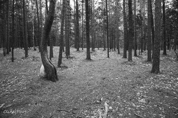 Where's Waldo%3F Artistic Nude Photo by Photographer ClinePhoto