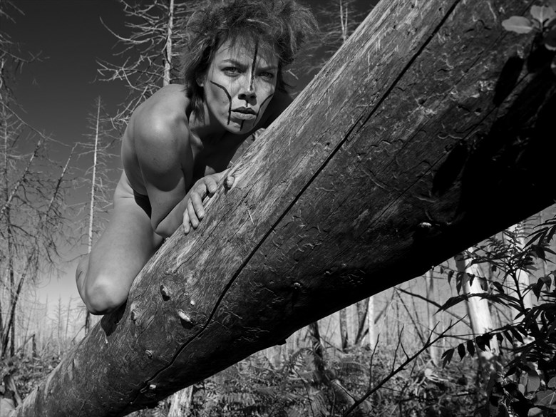 Wild on a tree Artistic Nude Photo by Photographer Jyves