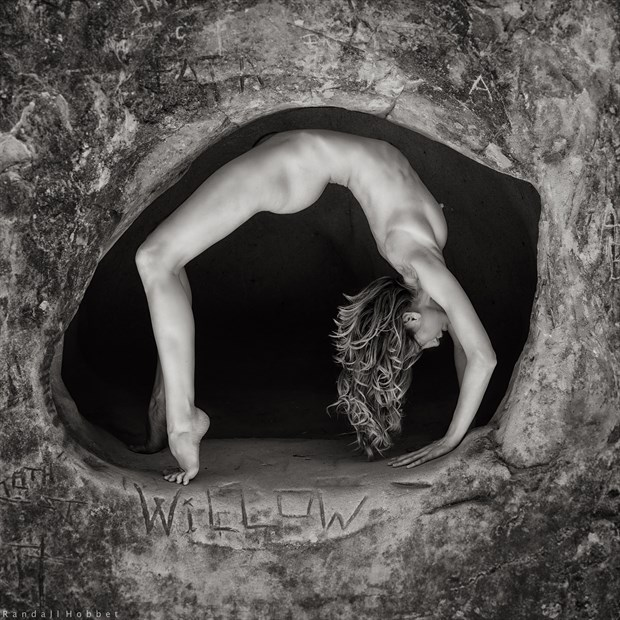 Willow(y) Artistic Nude Photo by Photographer Randall Hobbet