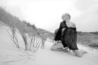 Wind over dunes Artistic Nude Photo by Photographer Roelf Rozema Fotocol