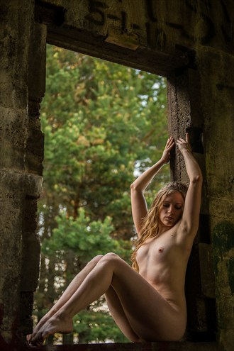 Window   %237 Artistic Nude Photo by Photographer mosesimages