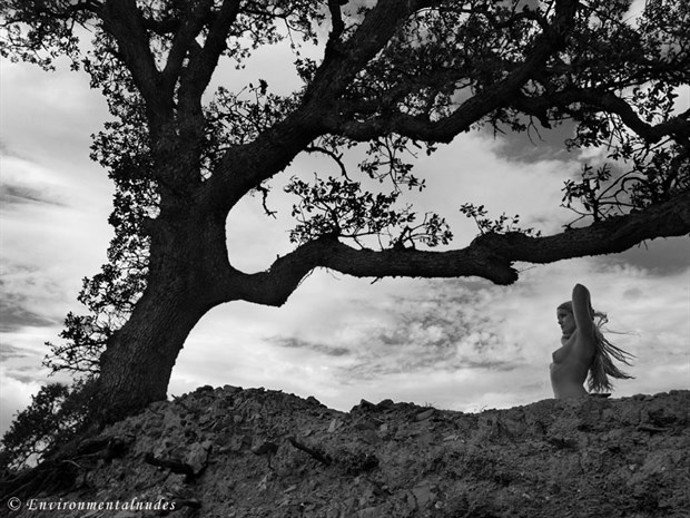 Windy Oak Blowin Artistic Nude Photo by Photographer Environmentalnudes