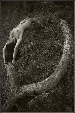 Wishbone Artistic Nude Photo by Photographer Magicc Imagery