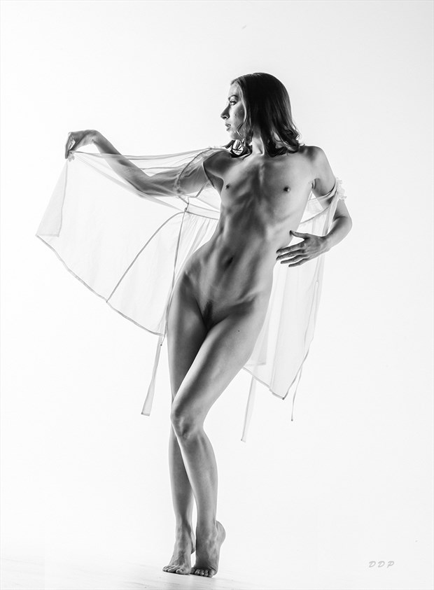 With Lace Artistic Nude Photo by Photographer Dream Digital Photog