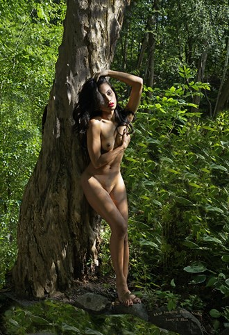 Woman, nude, leaning against tree trunk, in forest Artistic Nude Photo by Photographer Larry