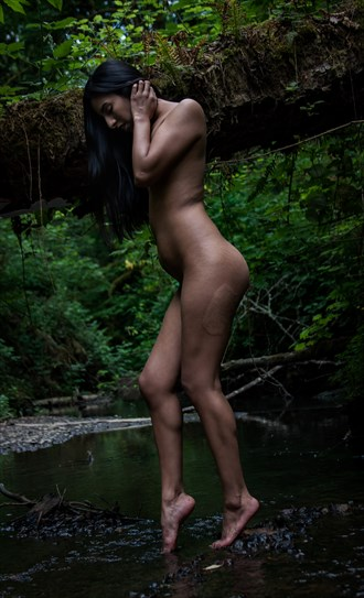 Wondering the woods  Artistic Nude Artwork by Model Shortyy