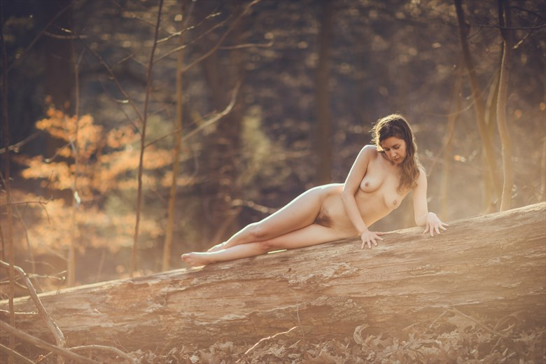 Wood Nymph Artistic Nude Photo by Photographer GerardChillcott